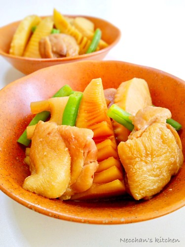 Simmered Chicken and Bamboo Shoots