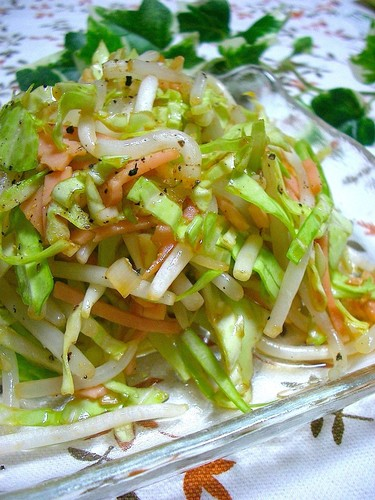 Spicy Spring Cabbage and Bean Sprout Salad