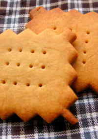 Macrobiotic Spicy Shortbread Cookies