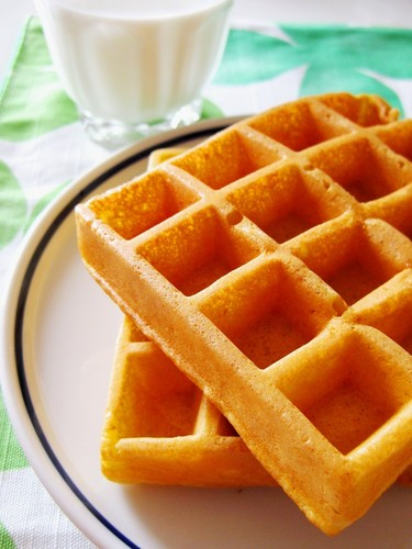 Yogurt Carrot Waffles