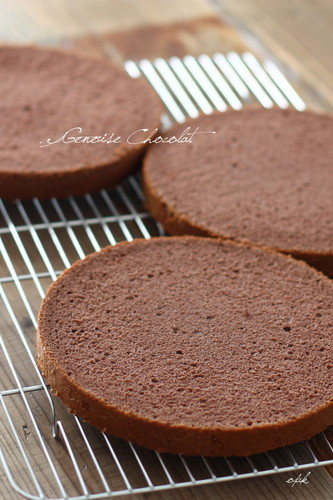 Fluffy and Moist Chocolate Sponge Cake