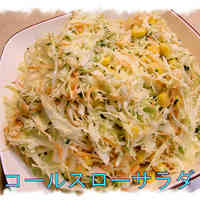 Mayonnaise Flavored Coleslaw