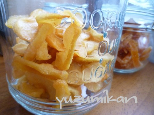 Homemade Dried Apples for Storing