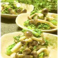Wasabi Greens and Shimeji Mushroom Saute with Mayo Soy Sauce
