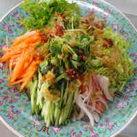 Somen Noodles with Lots of Vegetables and Leek Sauce