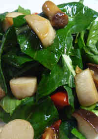 Diet & Macrobiotic Friendly King Oyster Mushroom & Komatsuma Green Salad