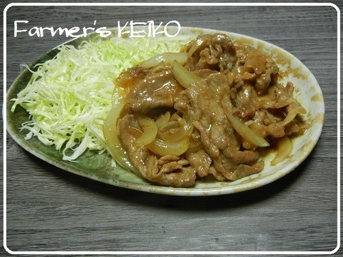 Stir-fried Pork and Onion with Ginger