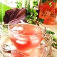 3-Ingredient Recipe Shiso Juice for Beautiful & Healthy Skin