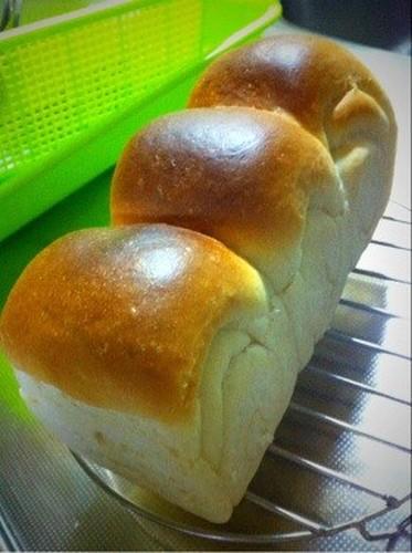 Standard Shokupan - Plain Bread Loaf
