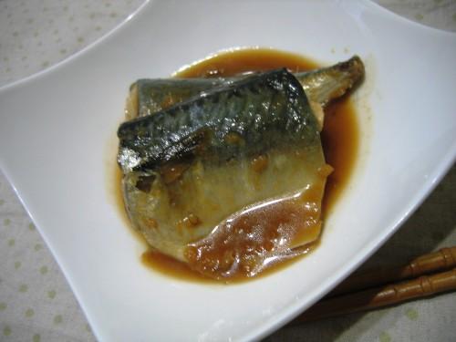 Miso Simmered Mackerel