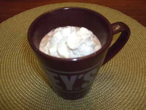 Delicious Hot Chocolate in the Microwave