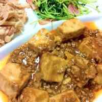 Easy Speedy Mapo Tofu