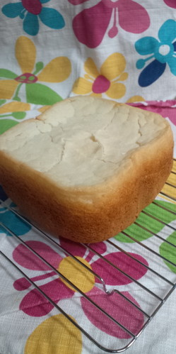 Gluten-Free Bread Made With 100% Non-Glutinous Rice Flour