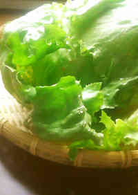 How to Tear Lettuce to Make it Taste 10 Times Better
