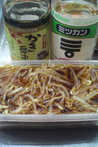Ultra-Cheap Bean Sprout Diet