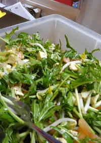 Vegetarian Tofu & Mizuna Salad