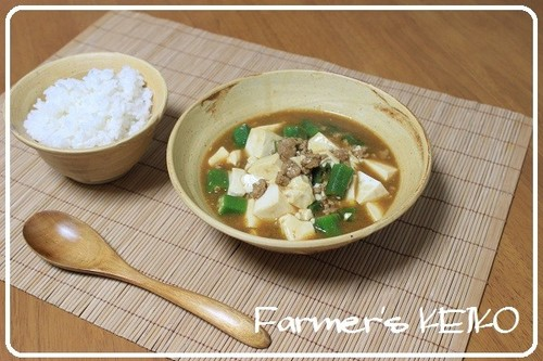 Japanese-style Curry Soup with Tofu and Okra