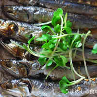 Dried Sardines Grilled with Oil