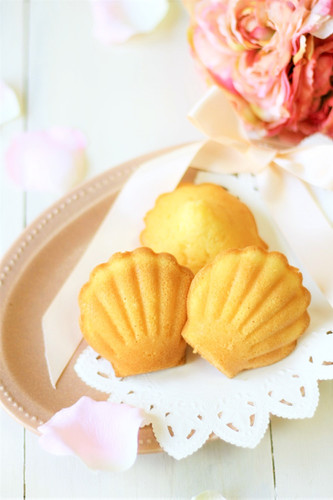 My Special Plain Madeleines