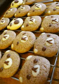 Cute Teddy Bear Cookies (Gluten-Free)