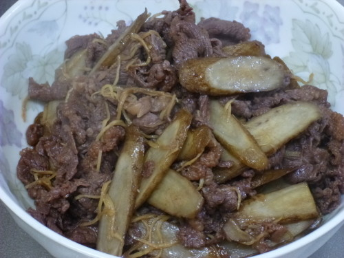 Fried Beef and Burdock Root