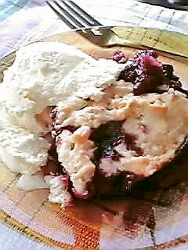 Apple & Mulberry Cobbler