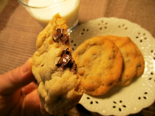 Moist and Chewy Chocolate Chip Cookie