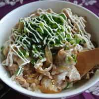 Scallion-Mayonnaise with Pork Rice Bowl