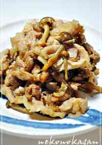 Our Household's Staple * Pan-Fried Pork with Ginger ♬