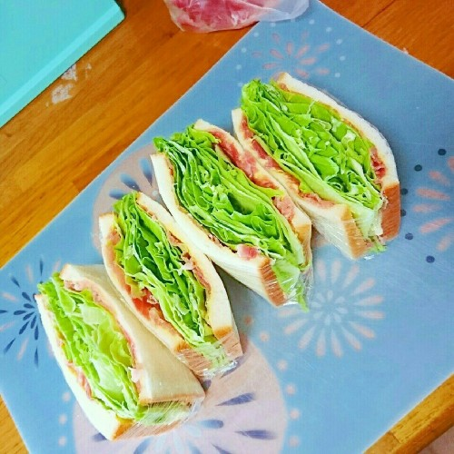 Easy and Nutritious Everyone Loves this Ham, Cheese and Lettuce Sandwiches