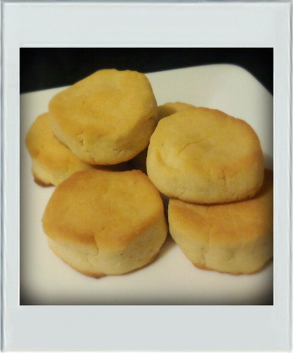 Low Sugar Cheesy Okara Cookies