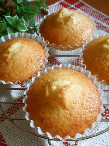 Butter-free Shio-Koji Madeleines