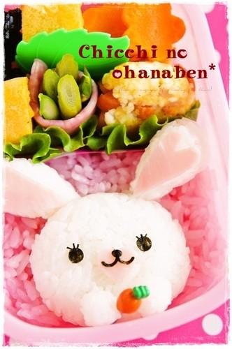Mofy Bunny Bento