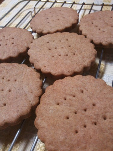 Crunchy & Slightly Sweet Cinnamon Cookies
