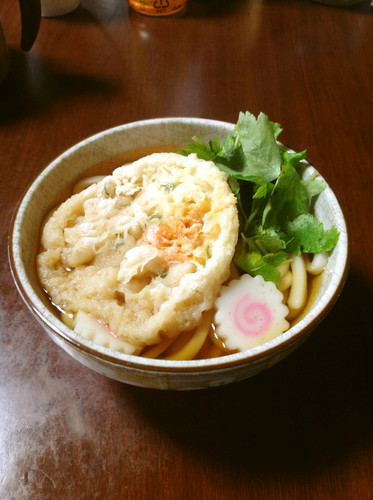 Basic Udon Noodle Soup