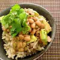 For Natto Lovers Outside Japan! Home-Made Natto in an Oven!