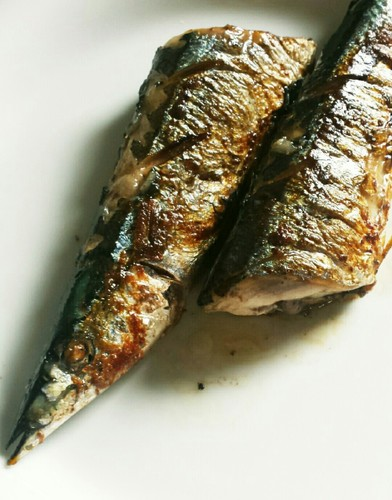 Cooked in a Frying Pan! Plump Salt-Grilled Pacific Saury (Sanma)