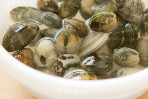 Easy! How to De-Sand Manila Clams or Surf Clams