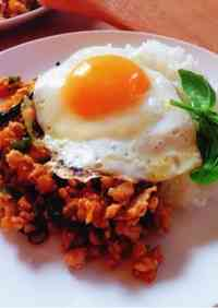 Pad Ga-prao (Spicy Minced Chicken on Rice with Fried Egg)