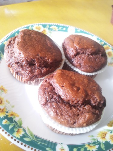 Tofu Chocolate Chip Muffins