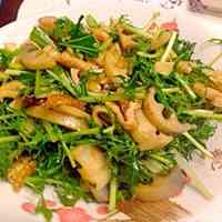 Macrobiotic: Kimpira Stir-Fry Salad with Mizuna and Lotus Root