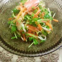 Pea Sprout & Carrot Salad