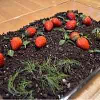 Garden Pudding