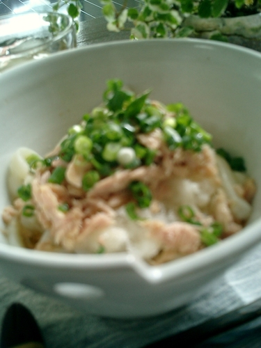 Cool Udon Noodles With Tuna and Grated Daikon Radish