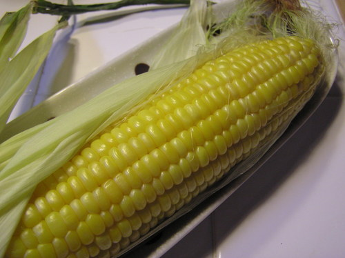 Easy Microwaved Corn in the Husk!