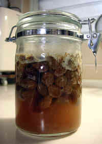 Homemade Natural Leaven - Raisin Yeast That's Stable Any Time of the Year