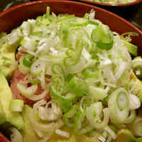 Tsukiji Style Rice Bowl with Avocado, Green Onion and Fatty Tuna