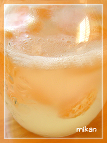 Mandarin Orange Yeast