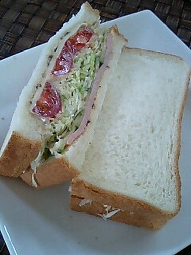 Hearty Cabbage Sandwich