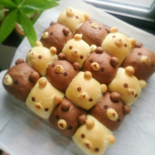 Bear Pull-Apart Bread (There's a trick!)